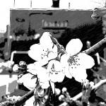一般貨物自動車運送事業の法令試験